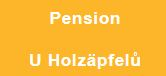 "Pension ""U Holzäpfelů"""
